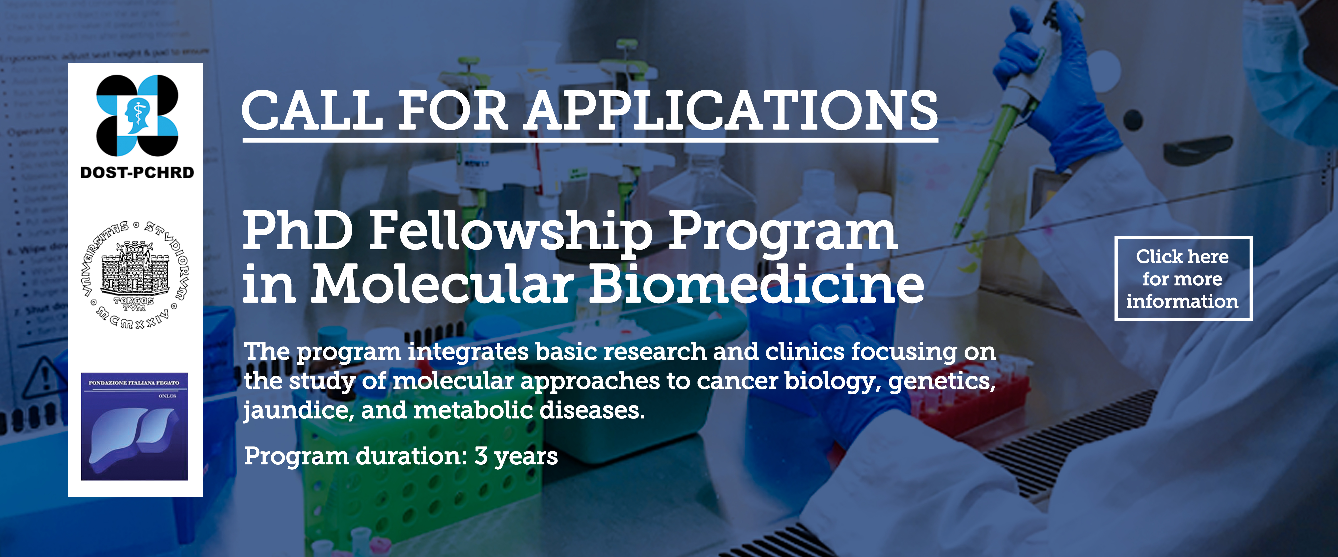 Molecular Biomedicine PhD Fellowship